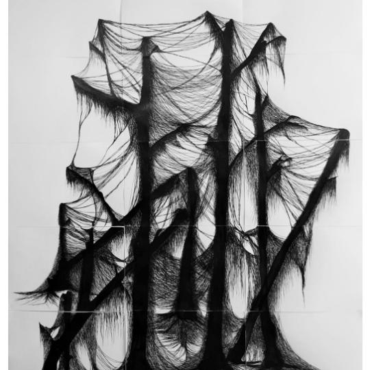 https://marte.art.br/marte/wp-content/uploads/2020/12/Edson-Macalini-Algas-filamentosas-sobre-restinga-seca-2020-Desenho-com-caneta-nanquim-sobre-papel-canson.-540x540.png