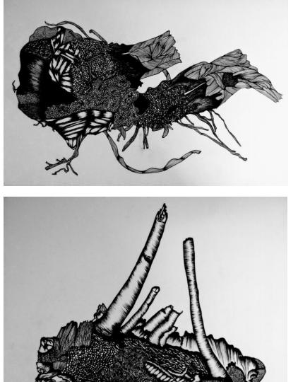 https://marte.art.br/marte/wp-content/uploads/2020/12/Edson-Macalini-Arqueologias-Afetivas-Desenhos-de-Raízes-Cepas-de-Uvas-em-nanquim-A3-422x540.png
