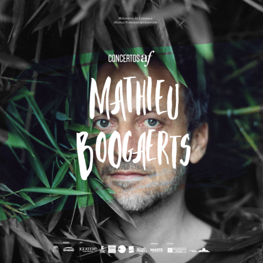 https://marte.art.br/marte/wp-content/uploads/2020/12/post_800x800px_mathieu_boogaerts-540x540.png